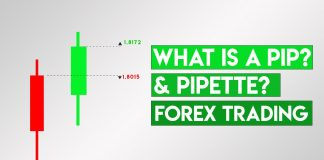 What is a Pip Forex Trading